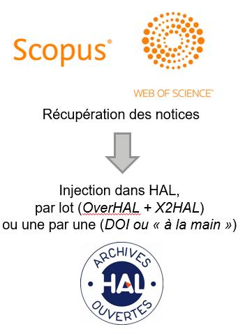 Procédure d'injection des notices vers HAL